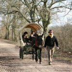 Les chemins de Rome en famille : 1400 Km sur la Via Francigena
