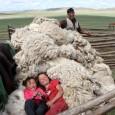 Exploration du monde présente Mongolie, les derniers nomades