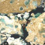 Impressionnant ! Photo de deux bateaux pris par la glace au Nunavut