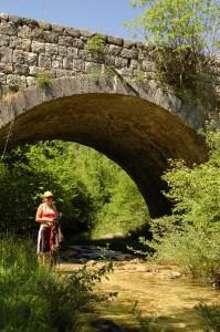 cukovici au montenegro-bis