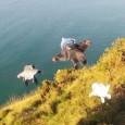 Vu surwidermag Nous vous dévoilons ci-dessous la vidéo d'un volen wingsuit le plus inouï de tous les temps… L'athlète n'est pas encore connu mais c'est sûr qu'après ce qu'il vient […]