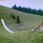 A voir aboslument : MEGAWOOSH, le saut humain le plus incroyable