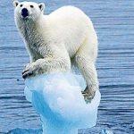 La plus importante pétition jamais lancée pour le climat