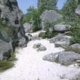 La randonnée-montagne de la Dame Jouanne se situe sur la communede Larchant, en bordure dela forêt domaniale de Fontainebleau.Elle suit le tracé du GR13ainsi que celui duPR. Le sentier Denecourt […]