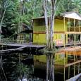 Bivouac de Franck Degoul le long des routes fédérales qui permet, entre autres, la contemplation des paysages (ici, dans la savane typique du sud de l'État d'Amapá). Images de Franck […]