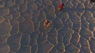 Salar Trek II – Expédition première mondiale sur les déserts de sel en Bolivie réussie à la deuxième tentative. Un aventurier Belge est la première personne au monde à traverser […]