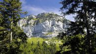 Hello les aventuriers, Aujourd'hui, on a le plaisir de vous offrir nos 10 sorties «Nature» à découvrir autour d'Annecy dans le département de la Haute-Savoie (74) Ce sont des sorties […]