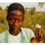 Film – Sur les routes du coton équitable