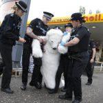 La police arrête un ours polaire au Royaume uni !