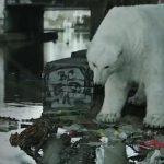 Un ours polaire dans les rues de Londres