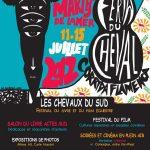Festival Les Chevaux du Sud aux Saintes-Marie de la Mer du 11 au 15 juillet 2012
