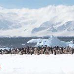 Michel Rocard au pôle Sud