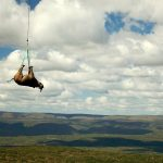 Avez-vous déjà vu un rhinocéros volant ?