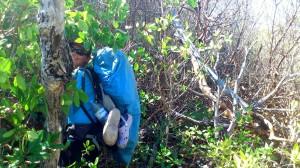 mangrove aventure (Copier)
