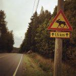 Un tour du monde en fauteuil roulant – Episode #1 : La Finlande