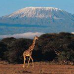 Destination la Tanzanie pour un séjour paradisiaque