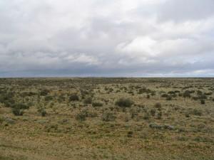 800px-Patagonian_plains_argentina