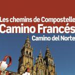 Guide Petit Futé : Chemins de Compostelle – Camino Francés – le chemin des origines