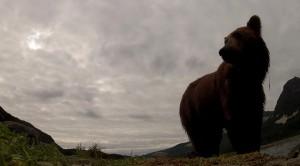 un-documentaire-pour-la-bbc