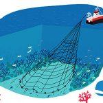 La BD qui fait le Buzz pour sauver les fonds marins mais dit-elle vrai ?