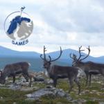 Partez avec Mélodie en Laponie à la rencontre du peuple Sames