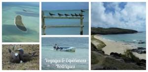 Voyages et Experiences Rodrigues 1 (Copier)