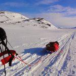 J'explique enfin ma passion des grands espaces sauvages et des mondes polaires