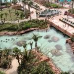 Bons plans et conseils pour visiter Dubaï