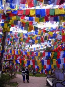 Darjeeling, Inde (Copier)