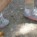 10 bonnes raisons d'aimer le Trail
