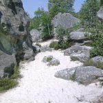 Randonnée-Montagne de la Dame Jouanne à Larchant