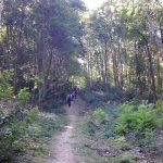 Une randonnée de l'extrême dans les Hauts-de-Seine : La Bossapas
