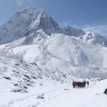 Le palmarès des Ecrans de l'Aventure 2015 :  les meilleurs films-documentaires d'aventure de l'année