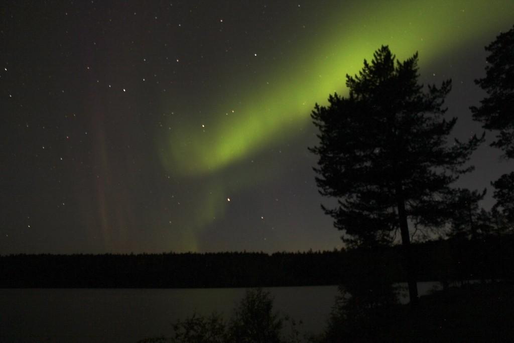 Aurore Boréale - Finlande (Crédits Photo : Sophie Planque)
