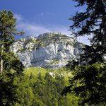 """10 sorties """"Nature"""" à découvrir autour d'Annecy"""