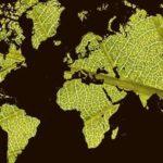 Le Tour du Monde dans son jardin