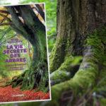 La Vie secrète des arbres : Ce qu'ils ressentent et comment ils communiquent