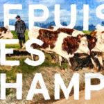 « Depuis les champs » de Thomas Baudre récompensé au Grand Bivouac 2019